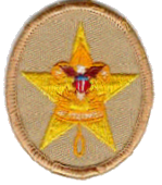 Star Scout Rank Insignia