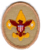 Tenderfoot Scout Rank Insignia
